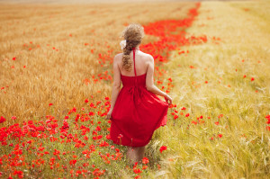 woman-walking red meadow red flowers--26374541