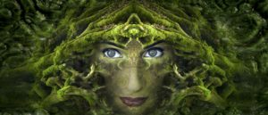 Awaken The Wild Woman Within