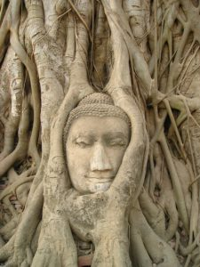 3 Powerful Steps How To Dissolve The Core Of Your Suffering